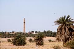 واحة النخيل, تمنطيط, أدرار, الجزائر