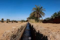 الساقية الشفاء الطب البديل, ادرار, الجزائر
